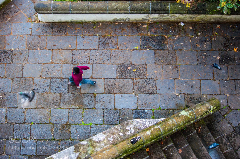 Photograph A Boy Bird Disruption by Gil Birman on 500px