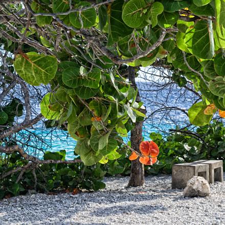 Romantic hideaway Caribbean