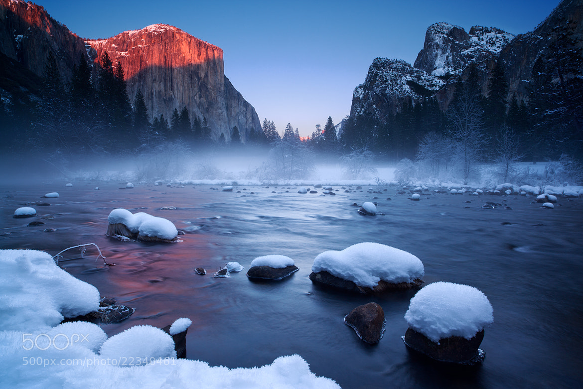 Photograph Winter Kingdom by Joe Ganster on 500px