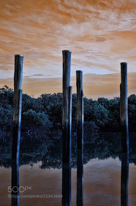 Photograph Different World by Ewan Arnolda on 500px