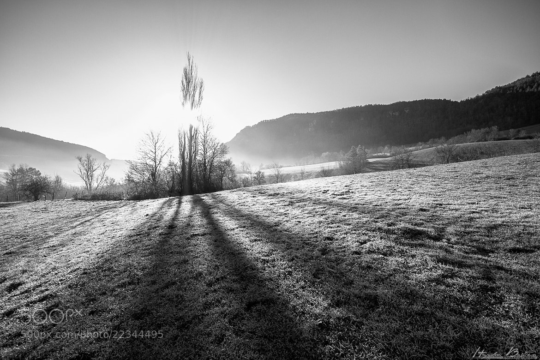 Photograph Frozen morning by Bastien HAJDUK on 500px