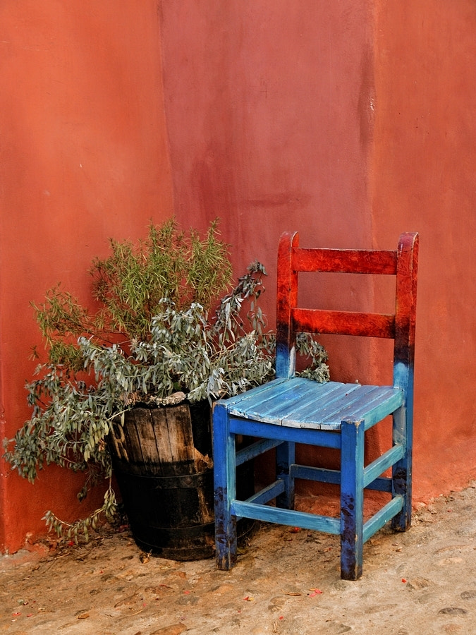 Photograph The little chair by Pascale Albrand on 500px