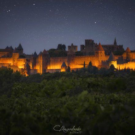 Carcassonne Night