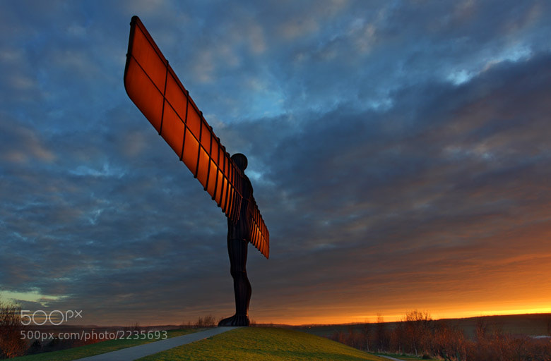 Photograph Angel of the North by Andrew Whitaker on 500px