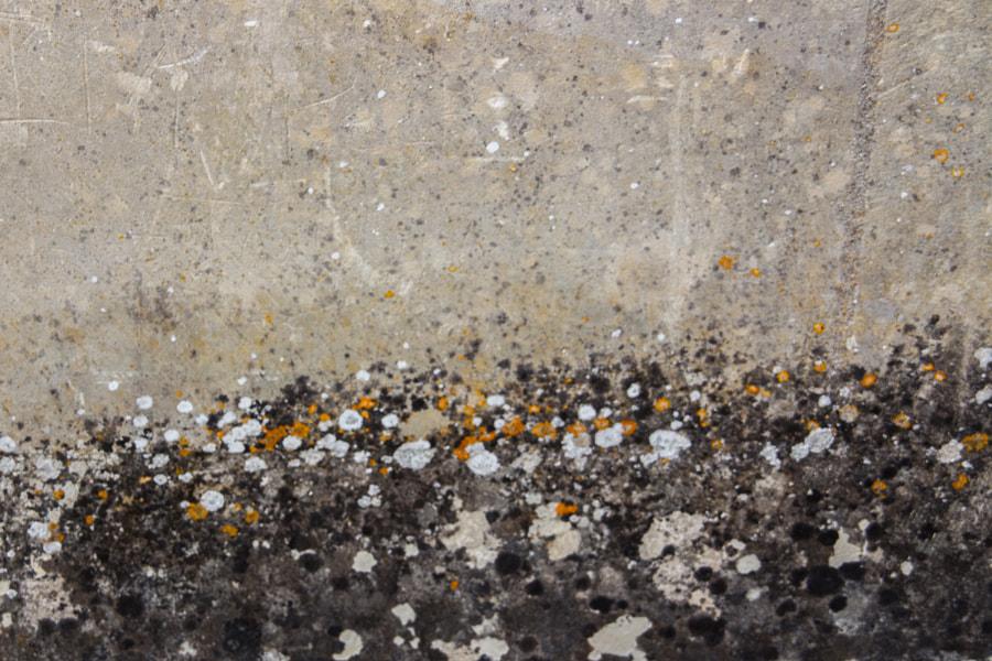 La foule (the crowd) de Christine Druesne sur 500px.com
