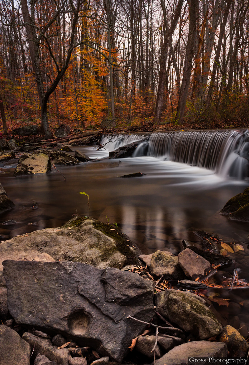 Photograph Waterfall in Autumn by Rudy Rudolph on 500px