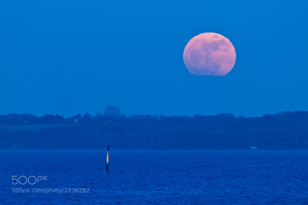 Photograph Super moon rising by Steen Nielsen on 500px