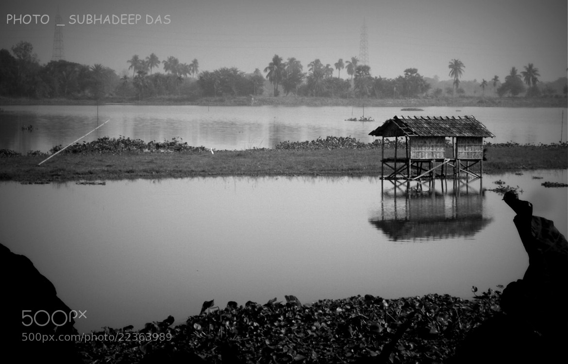 Photograph A WETLAND  B&W  by SUBHA   on 500px