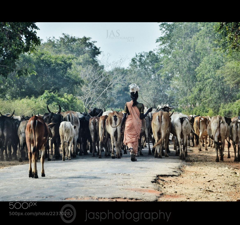 Photograph Order ! by jithin A Sankarji on 500px