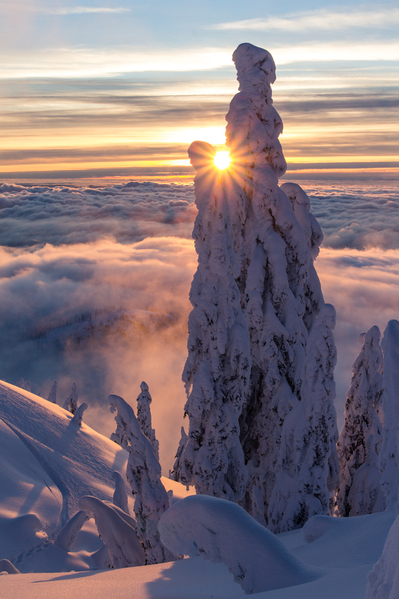 Photograph A Bit of WOW, From the Seymour Backcountry by Aaron Sarauer on 500px