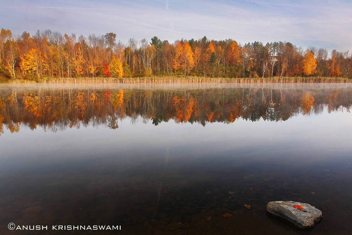 Photograph Vermont in Fall by Anush Krishnaswami on 500px