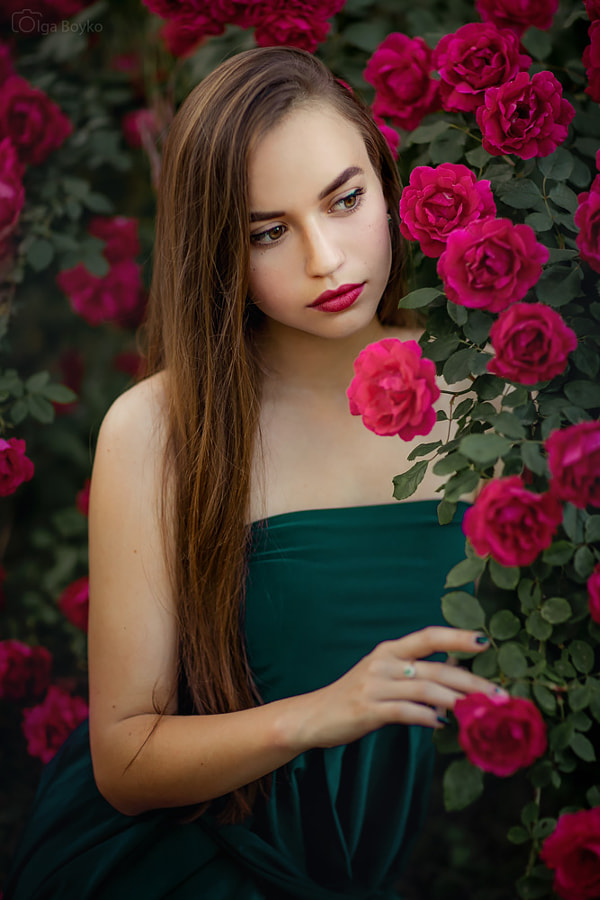 Roses by Olga Boyko on 500px.com