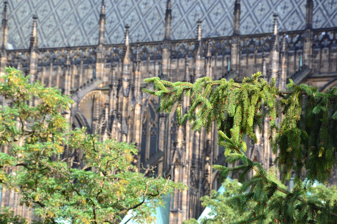 Photograph St. Vitus Cathedral by Maria Babiy on 500px
