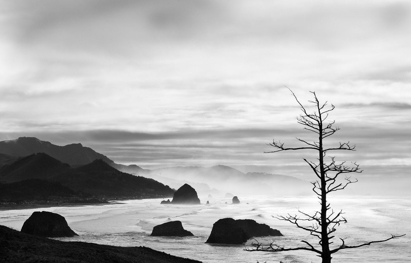 Photograph A View of Cannon Beach by Brian Pemberton on 500px