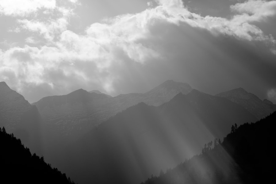 sunshine deluxe von Andreas Reininger auf 500px.com