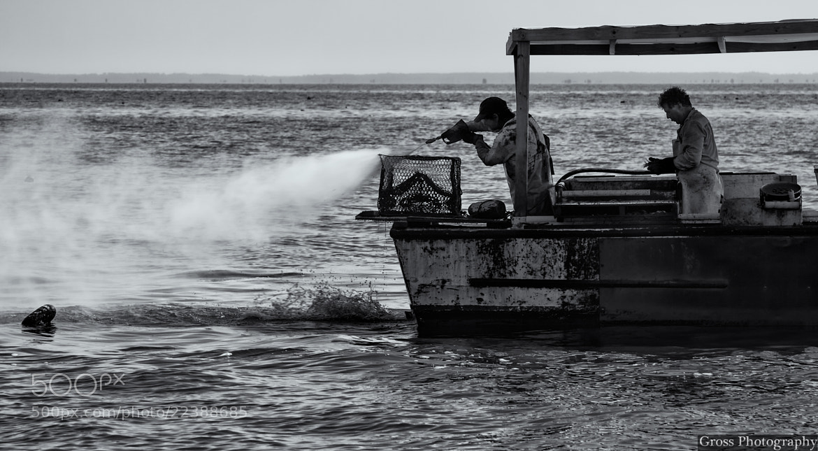 Photograph Commercial Crabbers by Rudy Rudolph on 500px