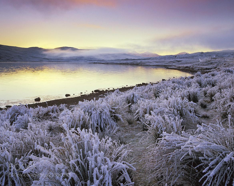 Photograph Arctic Blast by Ian Cameron on 500px