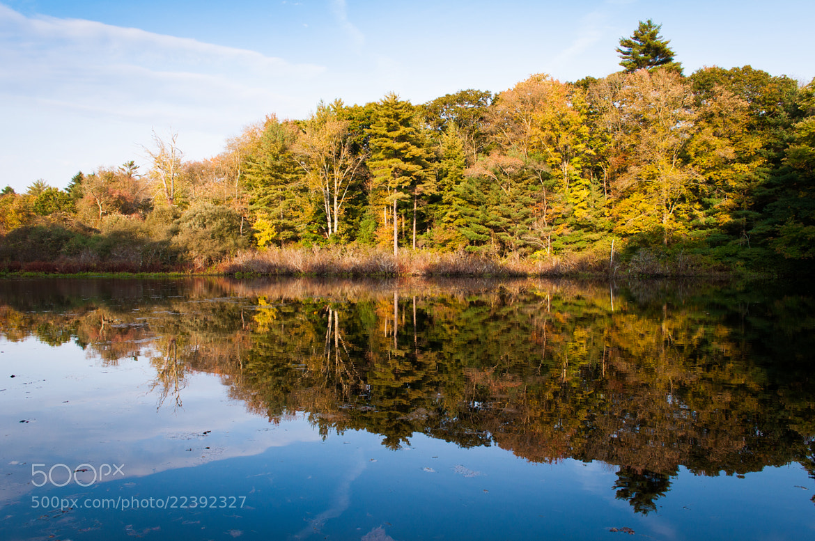 Photograph Reflections in the Old Mill Pond by Lee Costa on 500px