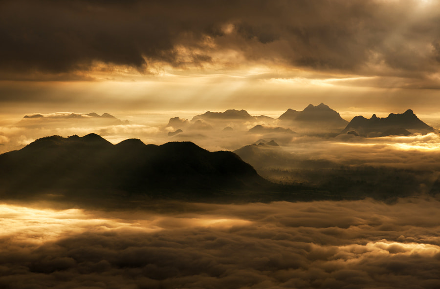 Photograph Golden Morning Mist by Kedofoto :D on 500px