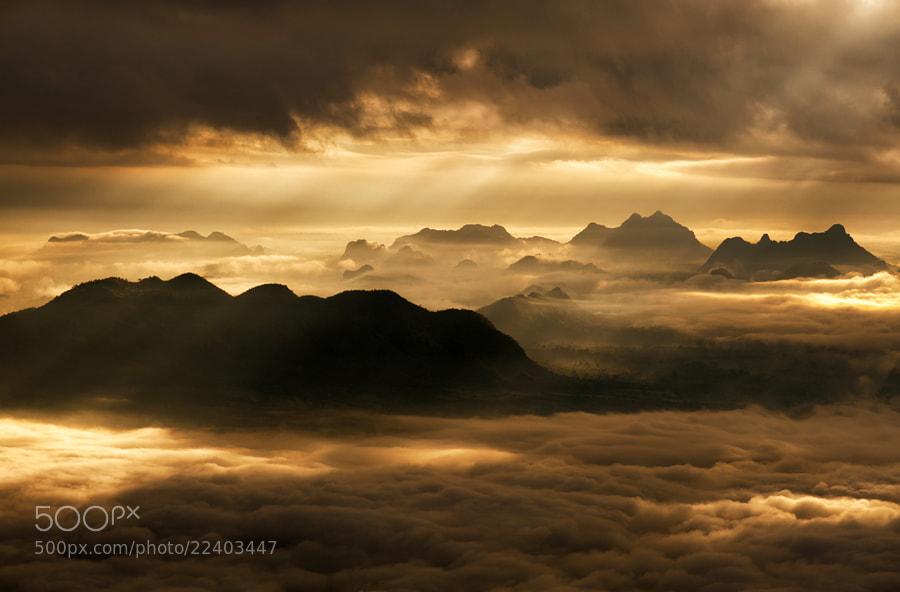 Photograph Golden Morning Mist by Kedofoto :D on 500px