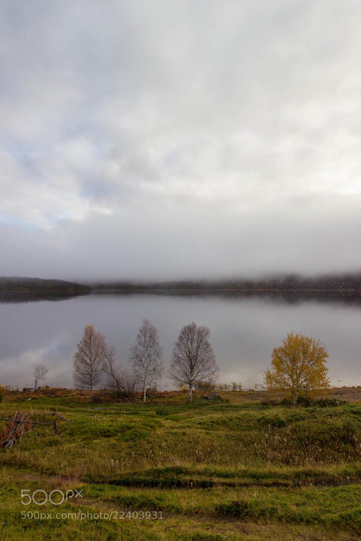 Photograph Ohcejoga, Finland by Sami Pirkola on 500px