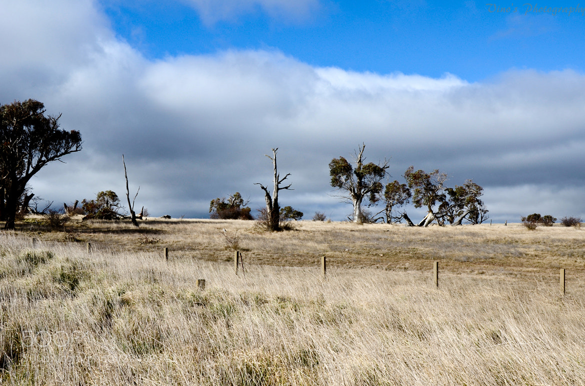 Photograph Highway  - On the way to Canberra. by Vinoth Kumar on 500px
