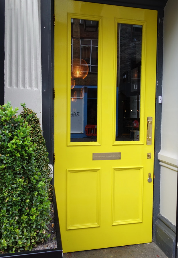 Yellow by Sandra on 500px.com