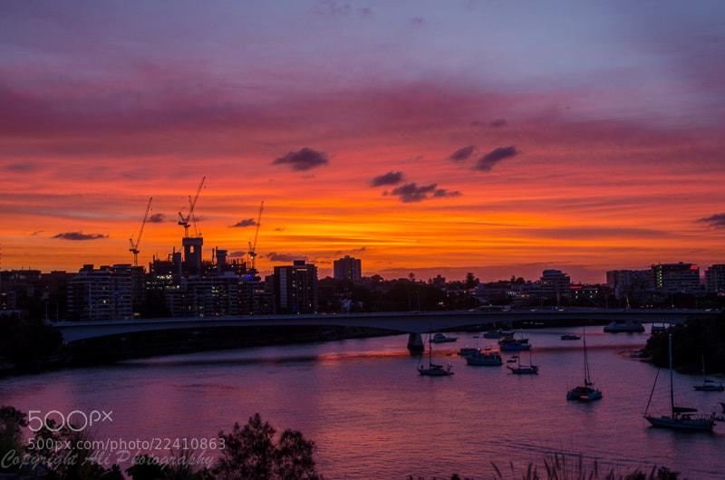Photograph Brisbane River by Ali Saadat on 500px