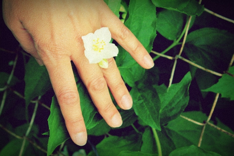 Photograph Flower ring by Dèlia Nacente on 500px