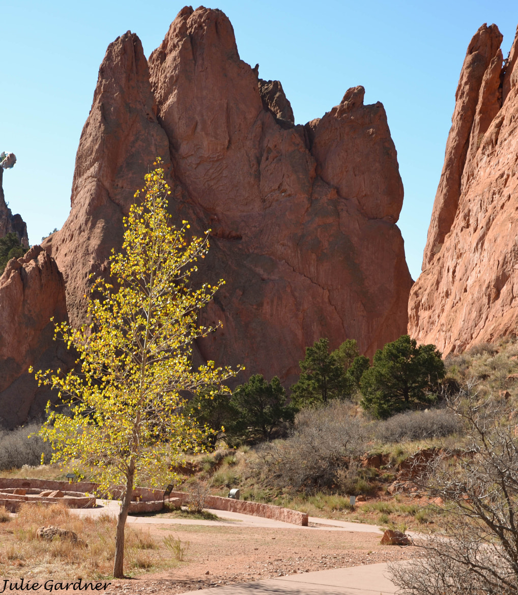 Photograph In the Garden of the Gods by Julie Gardner on 500px
