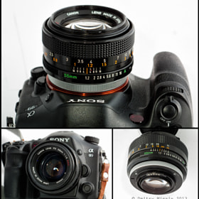 Canon FD 55/1.2 on A99 Sony by Dmitry Minein (Lance)) on 500px.com