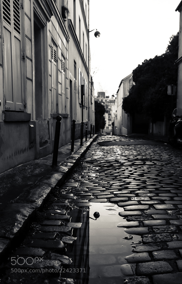 Photograph Cobblestones. by Laurence Penne on 500px