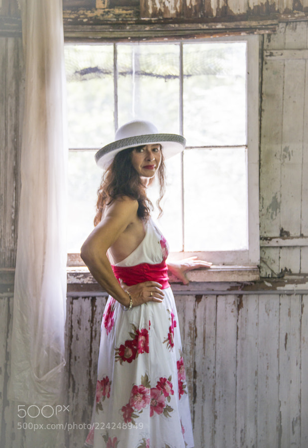 Southern Belle in the Old South