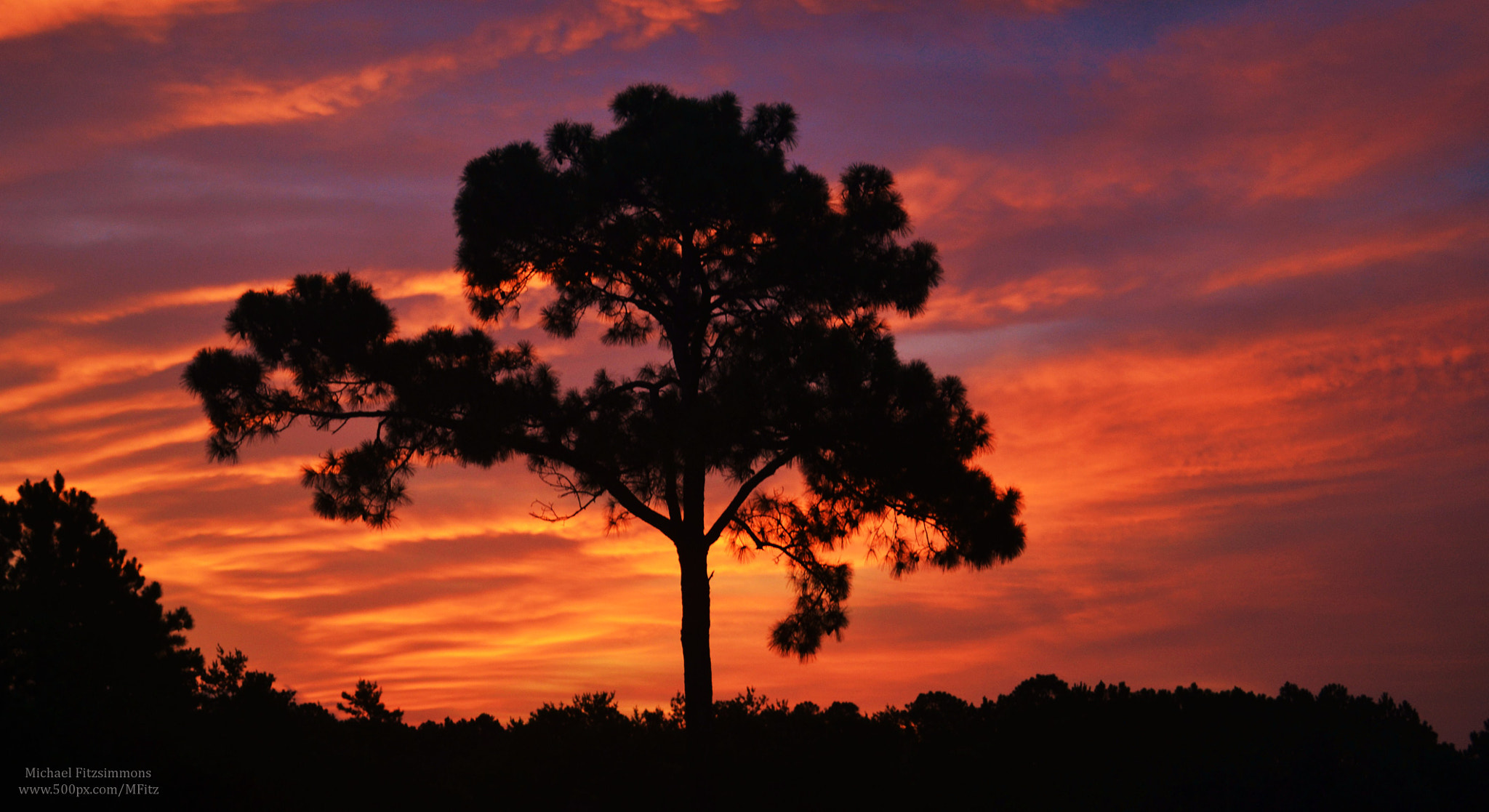 Photograph Florida Sunset by Michael Fitzsimmons on 500px