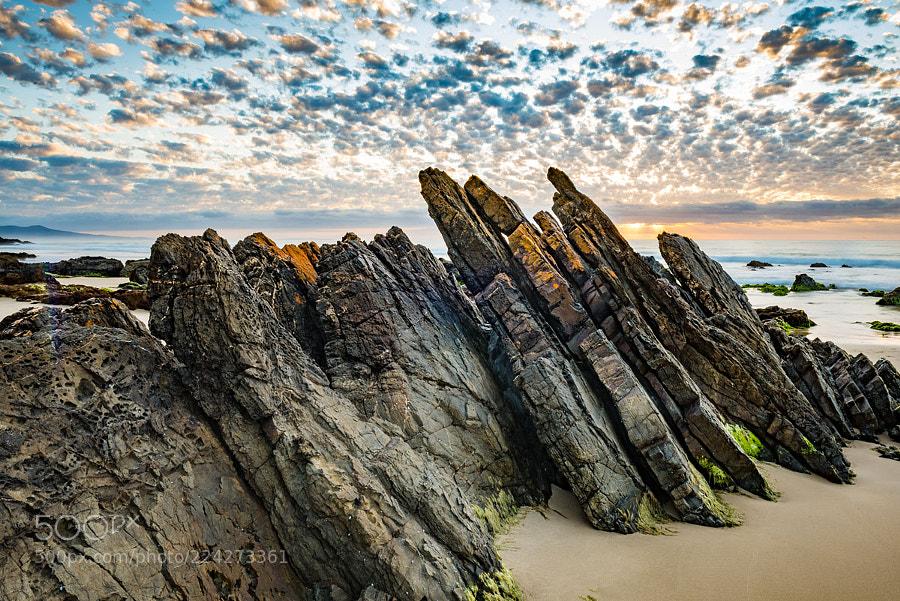 Betka Beach Dawn 04
