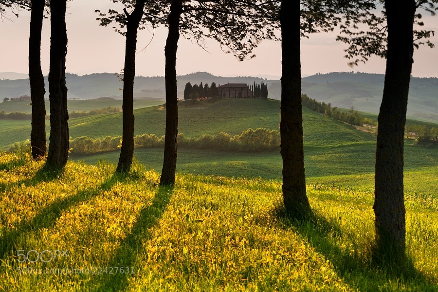 Photograph Tuscany through the trees   by Daniel Řeřicha on 500px
