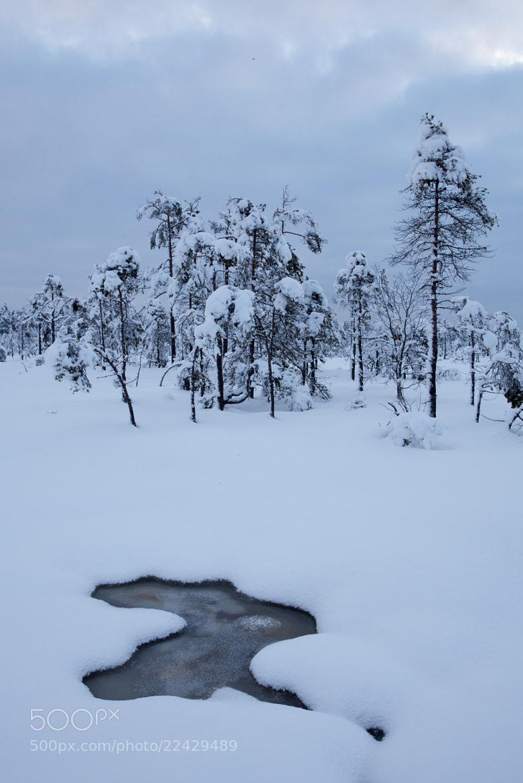 Photograph White by Lars Øverbø on 500px