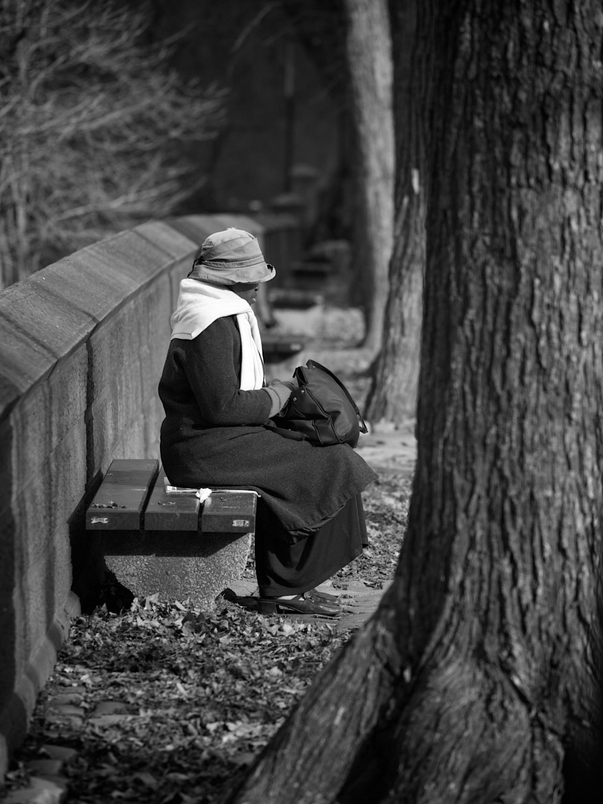 Photograph A lonely woman on a bench by Fabiano  on 500px