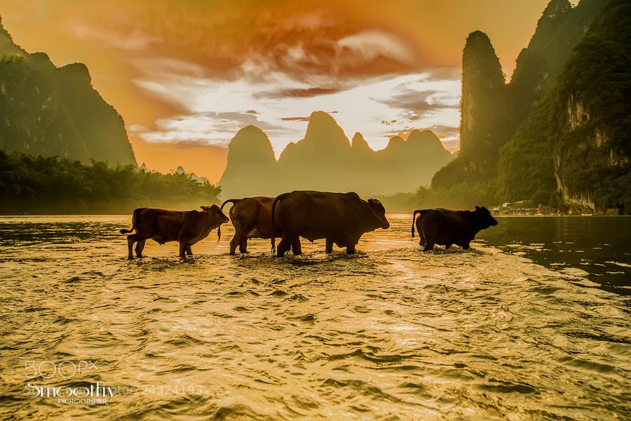 China Travel  ..
