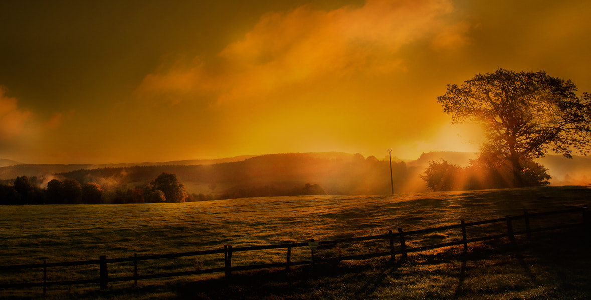 Photograph morning on the ardennen  by Patrick Strik on 500px