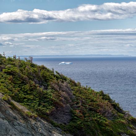 Sea Cliff & Iceberg