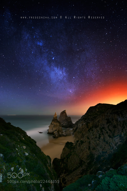 Photograph Ursa by night by Fred Concha on 500px