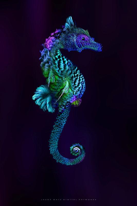 ~ Seahorse ~ by Jasna Matz