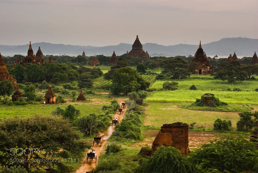 Photograph Horsecarts of Bagan by Chris Jones on 500px