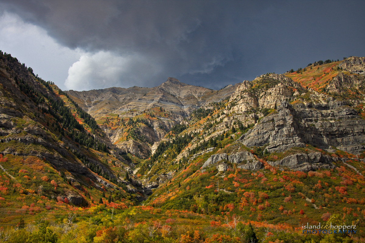 Photograph Fall Colours in Utah by Mike Perkins on 500px
