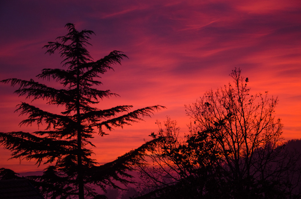 Photograph Umbria Sunset by Elisa Bistocchi on 500px
