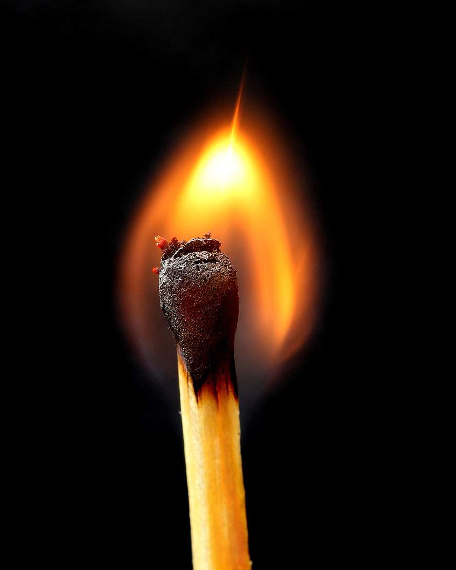 Photograph The Flame by Mark Jenkins on 500px