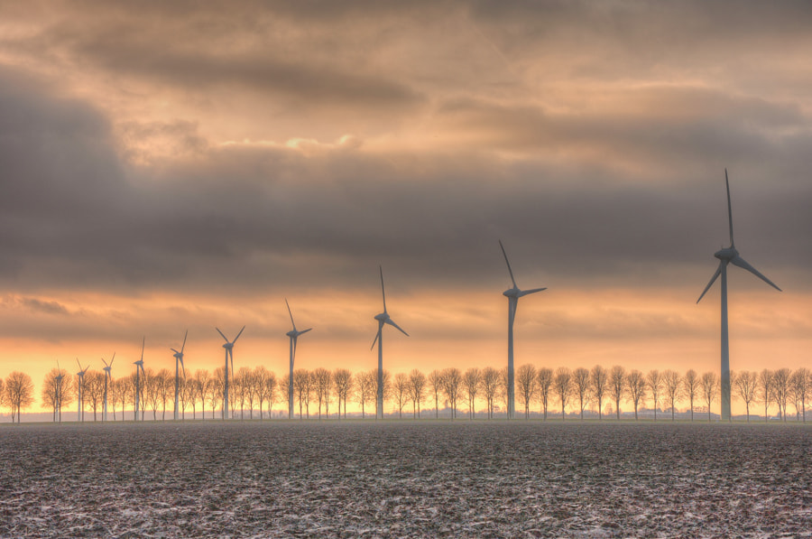 Photograph Flevoland by B Timmer on 500px