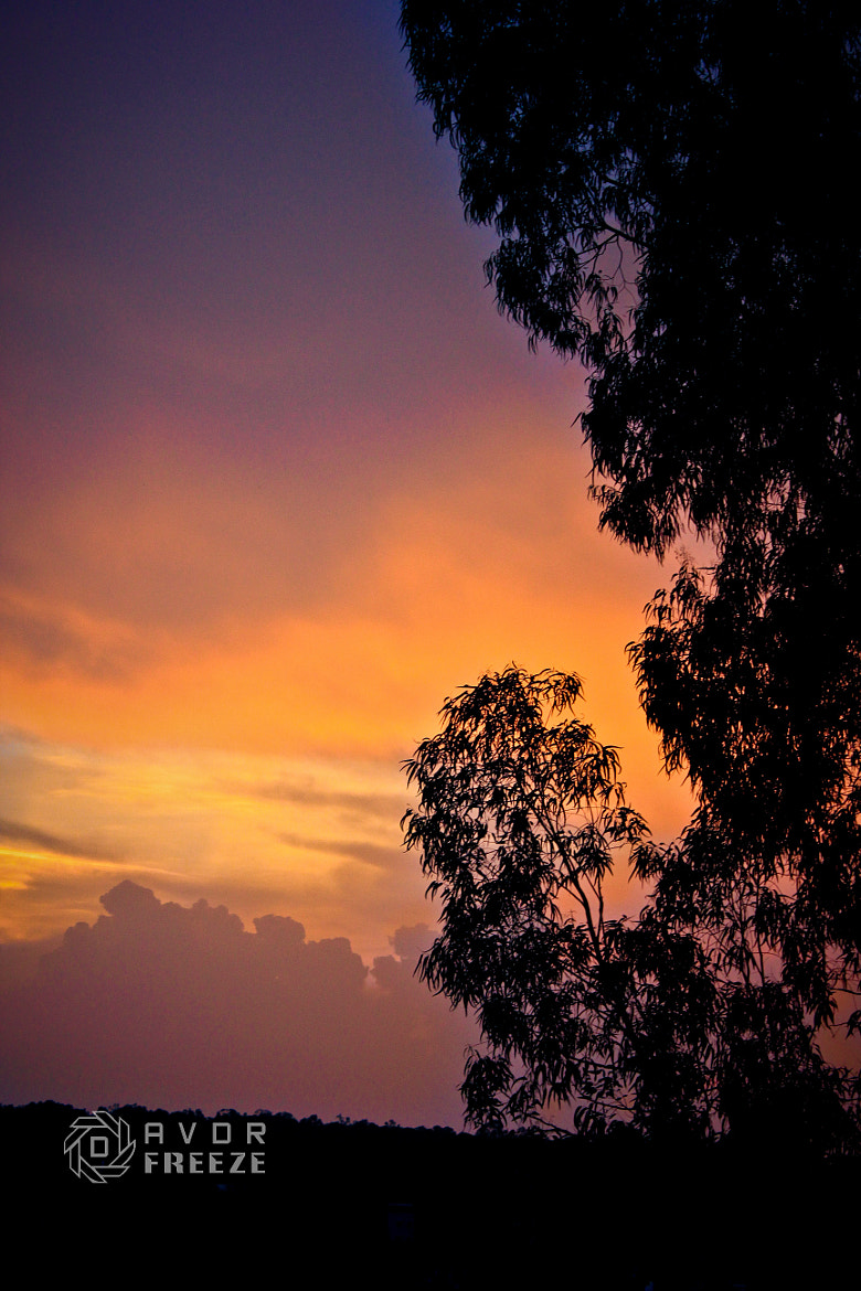 Photograph CHILL OUT  by Dinesh Ɍajasekaɤ on 500px