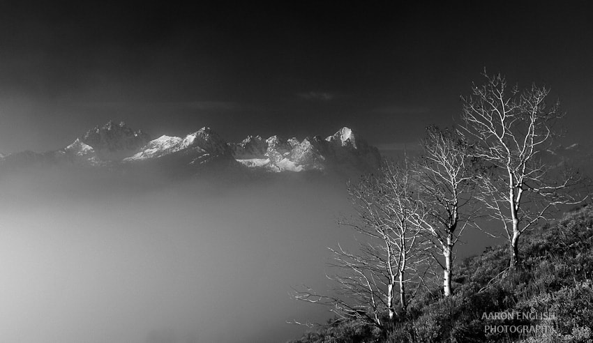 Photograph Mountains, clouds, and trees by Aaron English on 500px